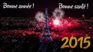 1408393734-bonne-annee-2015-004